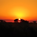 Sunset KNP
